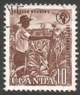 Uganda. 1962-64 Independence. 10c Used. SG 100 - Uganda (1962-...)
