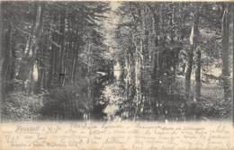 Neustadt I. W.-Pr. - 1904 - Pologne