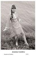 JOANNA LUMLEY - Film Star Pin Up PHOTO POSTCARD- Publisher Swiftsure 2000 (347/26) - Postales