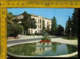 Treviso Conegliano - Treviso