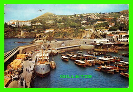 MADEIRA, PORTUGAL - LOOKING WEST FROM PONTINHA JETTY - TRAVEL IN 1972 - ANIMÉE DE BATEAUX - - Madeira