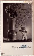 Little Teddy Bear. 1942 Photo Postcard - Ours