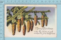Carte Postale CPA -Christmas Tree, - Used Voyagé En 1925 + USA Stamp, Send To Dismont Maine - Noël