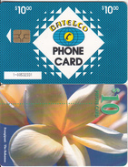 BAHAMAS ISL.(chip) - Frangipani(BAH C25b), Small Number In Box, Chip GEM6b, Used - Bahamas