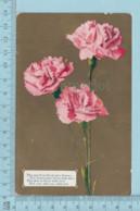 Carte Postale CPA -Flowers Roses, - Used Voyagé En 1911 + USA Stamp, Send To Easton  N.Y. - Fleurs, Plantes & Arbres