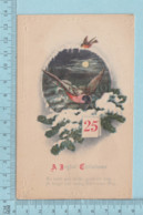 Carte Postale CPA -Christmas, Birds,  - Used Voyagé En 192? + USA Stamp, Send To Newbury Vermont - Noël
