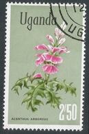 Uganda. 1969 Flowers. 2/50 Used. SG 142a - Uganda (1962-...)