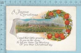 Carte Postale CPA - Christmas, Orange Field  - Used Voyagé En 1926 + USA Stamp, Cover Sandiego C.A. - Noël
