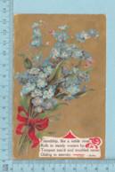 Carte Postale CPA - ClovFlowers - Used Voyagé En 1910 + USA Stamp, Cover Benton N.H. - Fleurs, Plantes & Arbres
