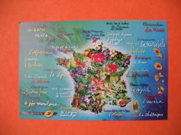 Carte Postale  2009  - Flore De Nos Régions Cachet Chantilly - Hommage De La Poste à Nos Régions - Fleurs