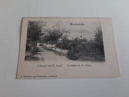 * WACHTEBEKE 't Kasteel Van M.Roghé -Le Château De M.Roghé  Oblitéré En 1904 - Wachtebeke