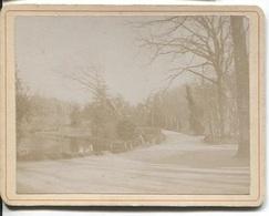 Photo Originale - VITRE - JARDIN PUBLIC 1920 (légendé Au Dos) - Places