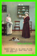 HUMOUR, COMICS - WHAT I SAYS IS, BE GOOD TO THE CAT, AND YOU SAFE HALF YOUR POT WASHING - TRAVEL IN 1912 - BAMFORTH - - Humour