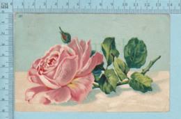Carte Postale CPA - Rose  - Used Voyagé En 1909 + USA Stamp, Cover Richmond Quebec - Fleurs