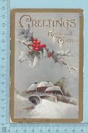 Carte Postale CPA - Greeting Kind & True  - Used Voyagé En 1909 + USA Stamp, - Noël