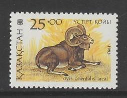 TIMBRE NEUF DU KAZAKHSTAN - OVIS ORIENTALIS ARCAL (MOUFLON) N° Y&T 24 - Autres