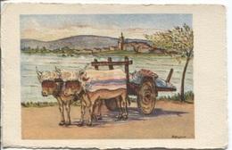CPA - PAYS BASQUE - ILLUSTRATION LAFFARGUE - Char à Boeufs Avec Colliers Cloutés - Edition C.A.P. - Aquitaine