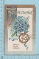 Carte Postale CPA - Forget-me-not, AMS  - Used Voyagé En 1912 + USA Stamp, - Fêtes - Voeux