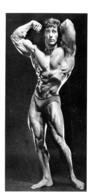 PHOTO HOMME  EN MAILLOT DE BAIN CULTURISME CULTURISTE  19 X 10 CM - Sports
