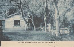 SORGENTI FERRUGGINOSE DI NOVAGLIO - OGGEBBIO - Verbania