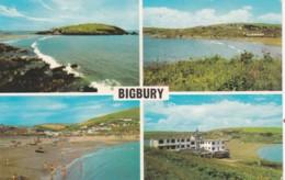 BIGBURY MULTI VIEW - Other
