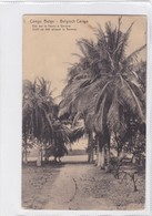 CONGO BELGE. VUE SUR LE FLEUVE A BANANA. CIRCULEE A BELGIQUE AN 1914 - BLEUP - Entiers Postaux