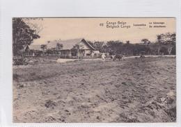 CONGO BELGE. LUSAMBO, LE LABOURAGE. CIRCULEE A BELGIQUE AN 1913 - BLEUP - Entiers Postaux