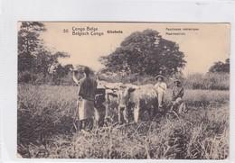 CONGO BELGE. KITOBOLA. FAUCHEUSE MECANIQUE. CIRCULEE A BELGIQUE AN 1912 - BLEUP - Entiers Postaux
