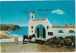 Torremolinos - 'Los Palomos' - Vista Parcial - (Costa Del Sol, Espana) - Donkey / Ane - Malaga
