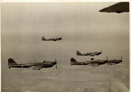 FAIREY BATTLE  BELGIAN 1938   +-  16 * 12 CM BRISTOL - Aviación