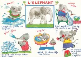 Postcard L' Elephant Little Elephants Story Cartoon Art Drawing Michel Tanelain My Ref  B23509 - Elephants