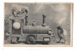 2  Poussins  Avec  Train - Birds