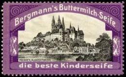 Tetschen/Elbe: Meissen Albrechtsburg Reklamemarke - Erinnofilia