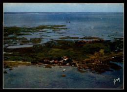 33 - Arcachon L'ile Aux Oiseaux Cabanes Sur Pilotis Vue Aérienne #08247 - Arcachon