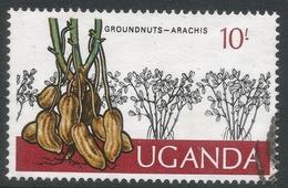 Uganda. 1975 Ugandan Crops. 10/- Used. SG 160 - Uganda (1962-...)