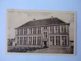 Cp/pk Torhout Aangenomen Lagere Meisjesschool Sint-Henricus Foto Mertens Zoon Zellik - Torhout