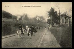 92 - Châtenay-Malabry - Sceaux Promenade à Ane Villa #01605 - Chatenay Malabry