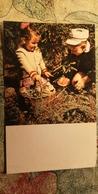 CHILDREN - Mushroomers -  Champignon - OLD Postcard - MUSHROOM 1969 - Champignons