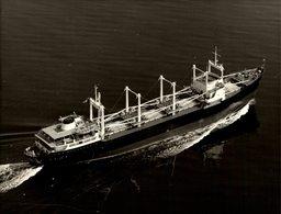 Guanabara +-23 17* CM BARCO BOAT Voilier - Schiffe
