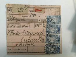 KINDOM OF SHS  KRALJEVINA SRBA HRVATA I SLOVENACA  1920.  SLOVENIAN STAMPS 2K + 15 I 20 VINARA - Slowenien