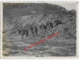 2 Photos-1938-transport Des Armes Par Des Mulets Dans Les Montagnes-n°1 - War, Military