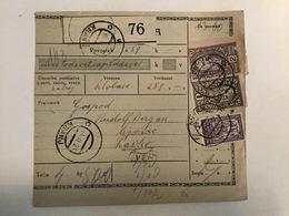 KINDOM OF SHS  KRALJEVINA SRBA HRVATA I SLOVENACA    SLOVENIAN STAMPS 2 + 1 DINARA + 40 PARA - Slowenien