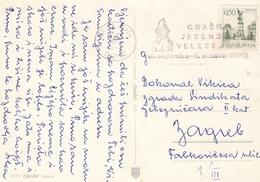 Yugoslavia Flam - Graski Jesenski Velesejem , Graz Autumn Fair , Ljubljana Slovenia 1972 - 1945-1992 Socialist Federal Republic Of Yugoslavia