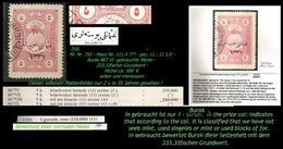EARLY OTTOMAN SPECIALIZED FOR SPECIALIST, SEE...Mi. Nr. 752 - Mayo 111 A - Bitte Lesen ! -RRR- - 1920-21 Anatolie