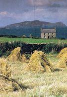 1 AK Irland Ireland * Blick Zur Insel Inishtooskert - Die Nördlichste Der Blasket-Inseln - County Kerry * - Kerry