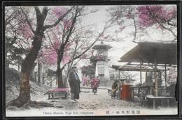 CPA JAPON - Yokohama, Cherry Blossom - Noge Hill - Yokohama