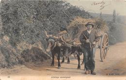 ¤¤   -   Attelage Auvergnat   -  Agriculteur  -  Agriculture       -  ¤¤ - Equipos