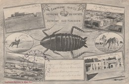 Militaria : Royaume Des Cafards - Extrème Sud-tunisien ( Tampon Marine - Service à La Mer ) - War 1914-18