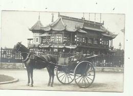 Laeken Fotokaart - Paardenspan - Laeken