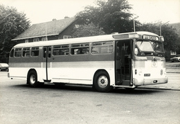 Autobus, Fageol Twin Coach, Aalsmeer, SVA Foto - Auto's